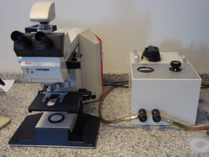 Optik Mikroskop ile İnceleme
