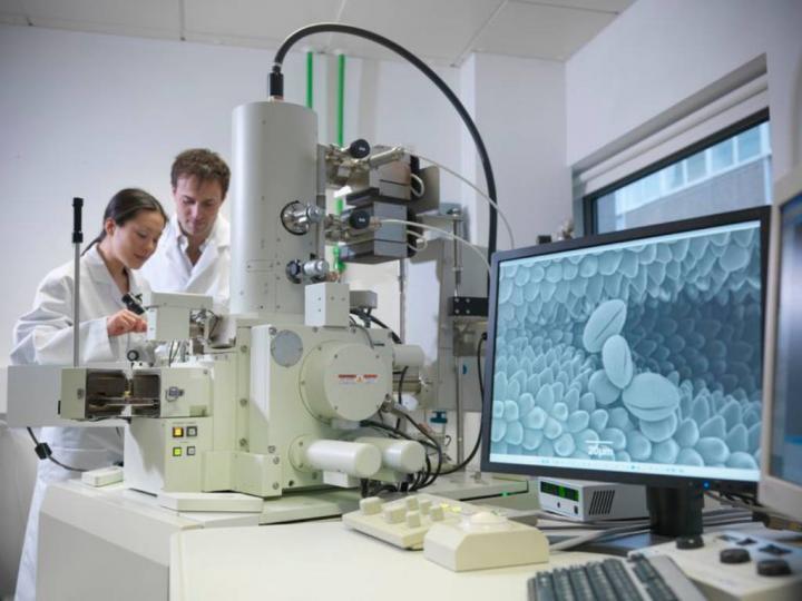 Elektron Mikroskobu ile İnceleme