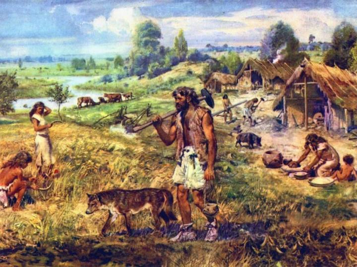 Neolitik Çağ