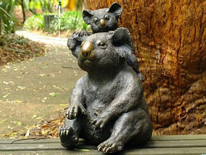 Koalaların Kültürel Önemi